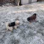 Winter!?!?