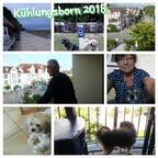 Kühlungsborn 2018
