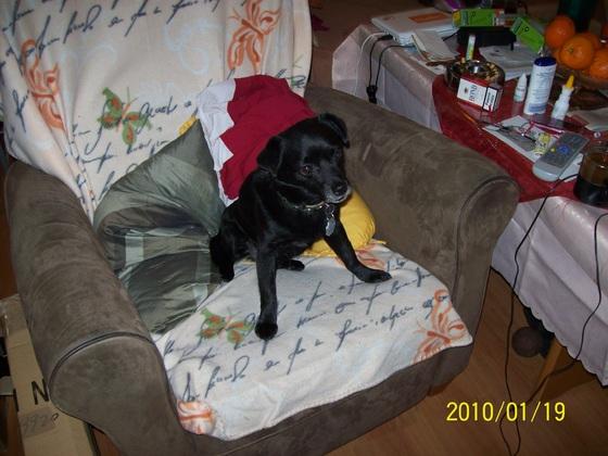 Der Sessel ist mir!