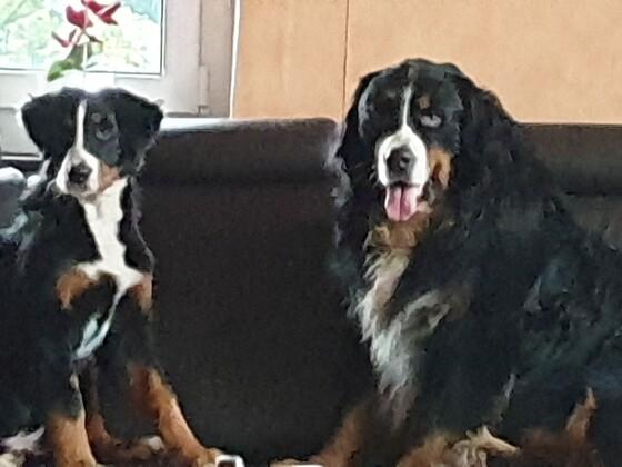 Max und Ronja