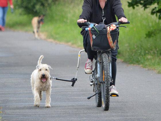 Franzi mit Fahrrad