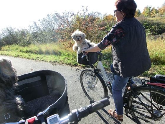 Das herrliche Herbstwetter ausnutzen, ab in die natur mit dem Rad.